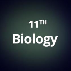 11th-biology-cbse-neet-aiims-jipmer